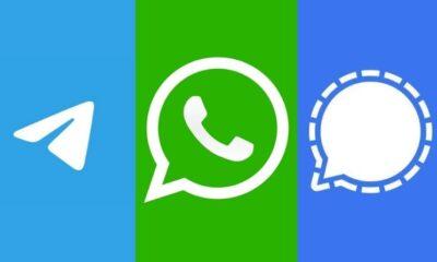 Signal and Telegram