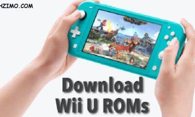 Best Websites to Download Wii U Roms for Cemu in 2021