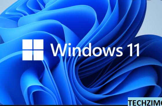 Windows 11 download